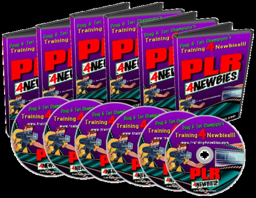 Product picture PLR for Newbies